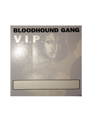 2000 Bloodhound Gang Hooray For Boobies Tour Chasey Lain V.I.P. Pass (Gray)