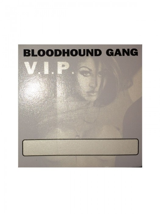 2000 Hooray For Boobies Tour Chasey Lain V.I.P. Pass (Gray)