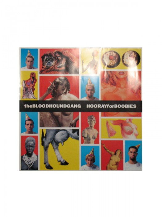 Hooray For Boobies Promo Poster